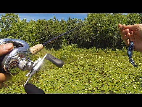 Punching Pads - Summer Pond Bassin In Bowie, MD