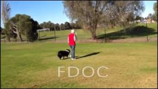 Fdoc Trained Outcomes