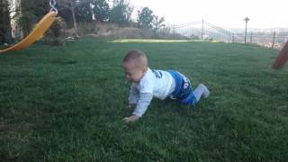 初めての芝生に、おっかなびっくりな誠希千! 立派なお屋敷のお庭に、私...