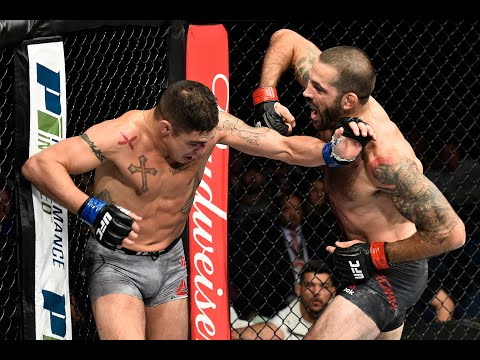 Best finishes From UFC 245 Fighters / Лучшие финиши бойцов UFC 245