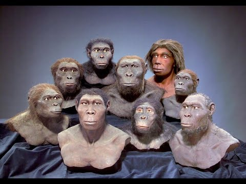 Most MYSTERIOUS Extinct Human Species!