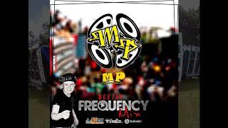 CD OFICIAL DE BAILES MINAS PAREDOES  2019 - DJ FREQUENCY MIX (funks com grave aumentado)