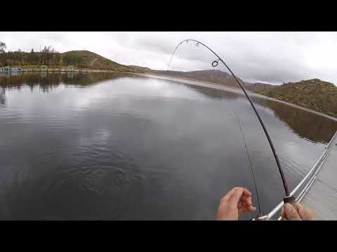 Lake Poway, Ca Trout Fishing January 2018
