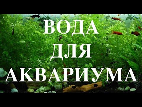 Какую воду заливать в аквариум.