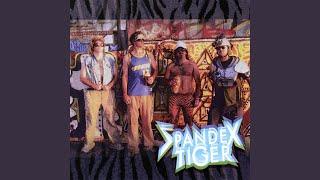 Popular Videos - Spandex Tiger