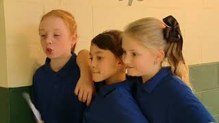 Prep to year 3 | Toilet block bullying