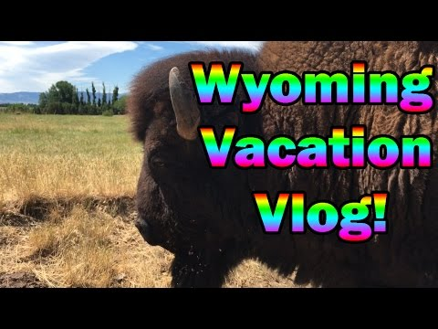Wyoming Vacation Vlog! - My First In Real Life Video! [3K Special]