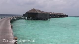 sixweeks-maldives-liveaboard-09800x534 Maldives