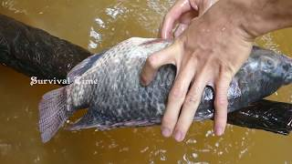 Primitive Cooking Roasted Big Fish (2Kg) On River in Forest | Primitive Cooking ASMR