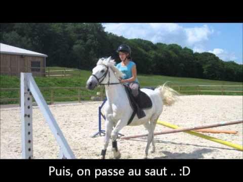 Cours de Saut galop 3-4 - YouTube