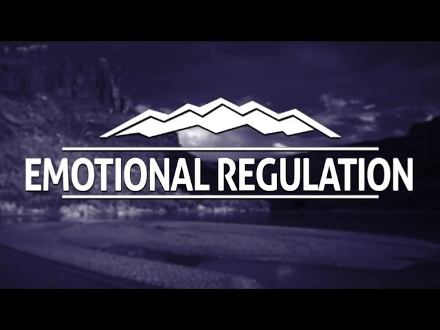 Elevations RTC - Emotional Regulation and DBT