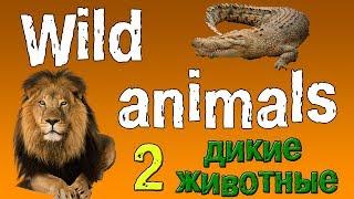 Английский для детей. Животные на английском языке.(дикие животные 2).