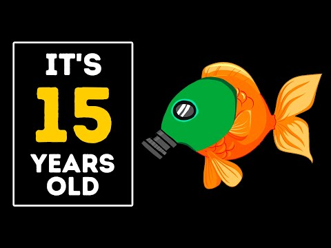 A Goldfish Will Live for 15 YEARS If You Do This