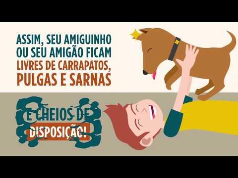 Vídeo em Animação 2D | Medicamento para Pet 02