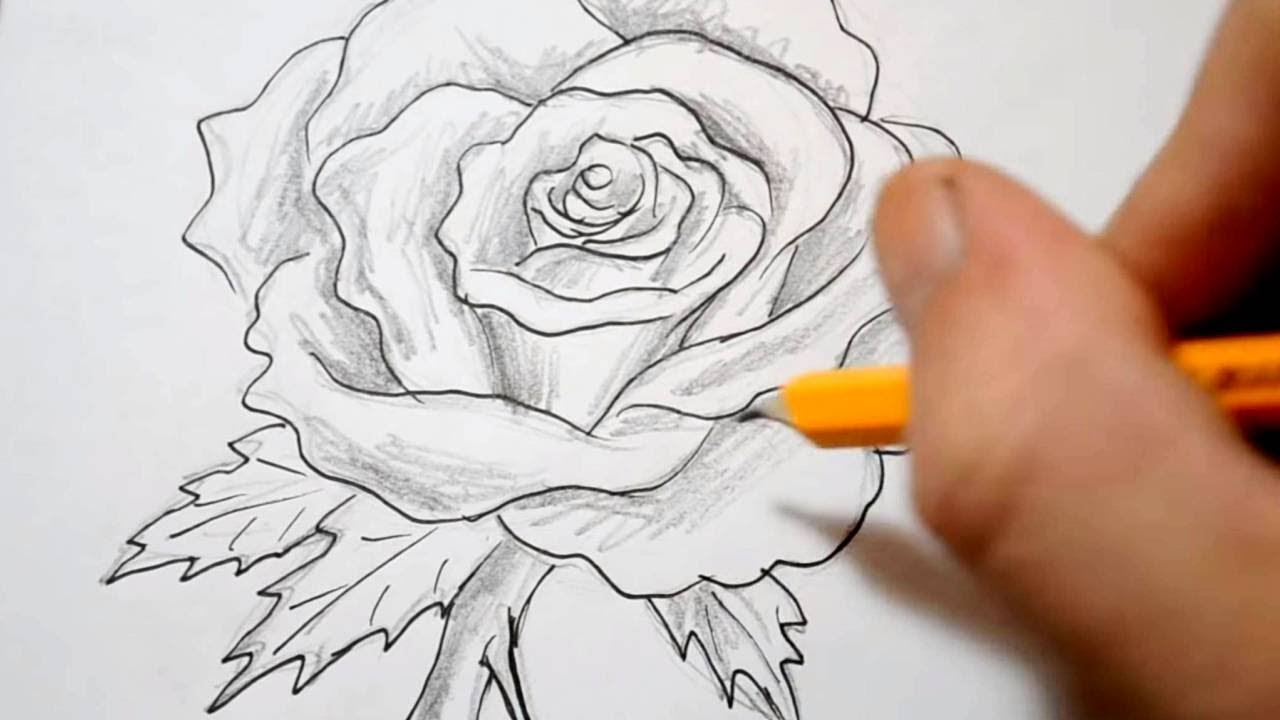 c9594df5b How to Draw a Rose - Quick Sketch - YouTube