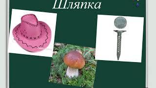 Русский язык 3 класс Тематическая группа слов