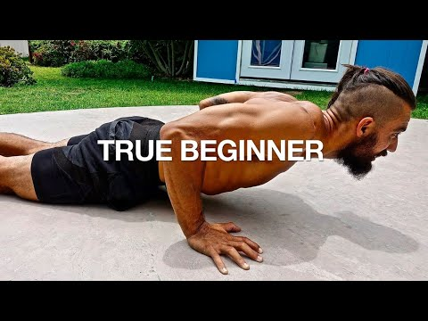 Full Body Workout NO GYM *BEGINNERS FOLLOW ALONG*