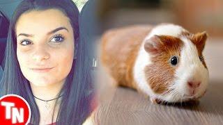Jovem coloca porquinho-da-Índia no micro-ondas e causa revolta nas redes sociais