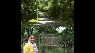 FOREST ROAD TRIP|CHINNAR WILDLIFE SANCTUARY,SHOLAYAR|Lifestyle beats with Harsha|MALAYALAM VLOG