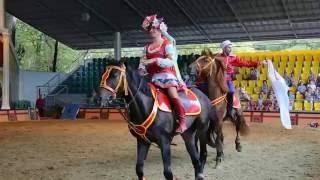 Конное экстрим-шоу в сочинском парке
