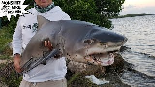 What Kind of Shark is This?  Fishing The Mullet Run 2018 | Monster Mike