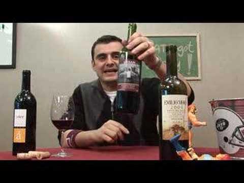 Wines From Ribera Del Duero In Spain - Episode #373
