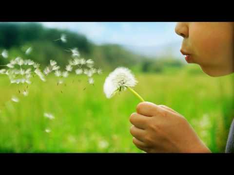 Emotional Horizons - Lush (Flawless Falling) (Original Mix)