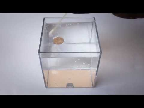 How To Make Coins Float On Water [original] :)