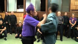 Ninjutsu Demonstrations By Ninja Grandmaster- Bujinkan Ninjutsu Masaaki Hatsumi Sensei