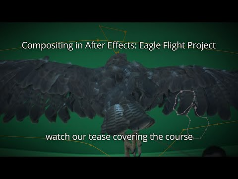 AFX230: Compositing in After Effects - Eagle Flight Project
