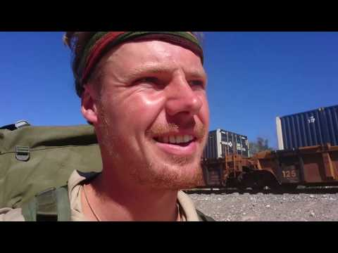 Searching For Peyote In The Mexican Desert