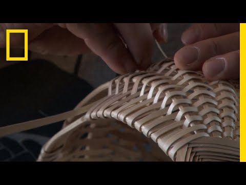 How to Make a Traditional Woven Basket from a Tree | Short Film Showcase