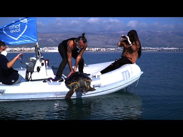 Piero libera in mare tartaruga Pelù