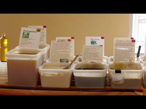 В Шадринске открыта выставка-ярмарка «Таежный мед»
