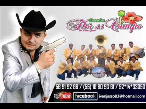 **IVAN JASSO Y SU BANDA FLOR DEL CAMPO (en vivo gustavo baz edo mex.) CD COMPLETO**
