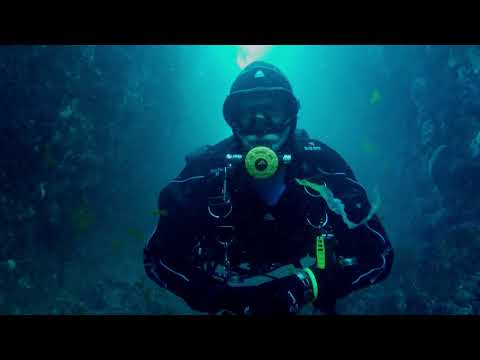 Scuba Diving Mermaids Kitchen   Wellington, NZ   GoPro Hero 5