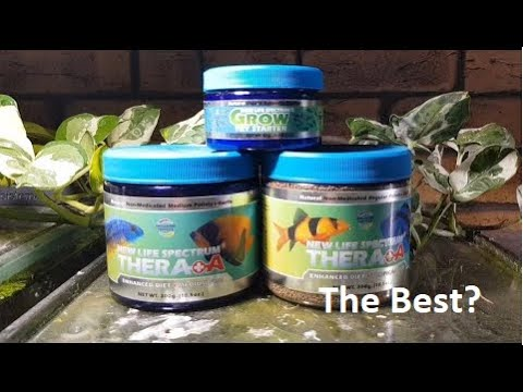 The Best Fish Food? - New Life Spectrum Review