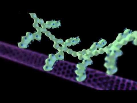 Nanotechnology Animation