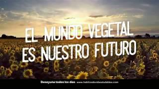 El mundo vegetal es nuestro futuro