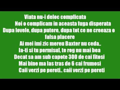 Smiley feat. Alex Velea & Don Baxter - Cai verzi pe pereti [Lyrics] [HD]