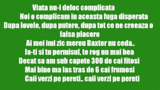 Smiley feat. Alex Velea & Don Baxter - Cai verzi pe pereti [Lyrics] [HD]
