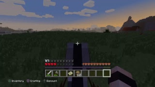 Minecraft- new world