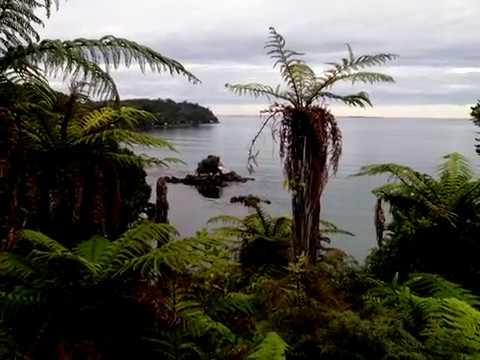 View from Oban, Stewart Island