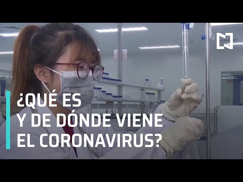 ¿Qué Es El Coronavirus? | ¿Dónde Surgió El Coronavirus? - Noticias MX