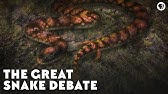 The Great Snake Debate