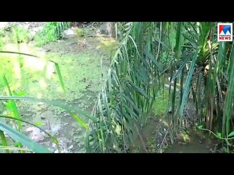 അഞ്ചൽ ചിറയിൽ കയ്യേറ്റവും മാലിന്യം തള്ളലും | Kollam Anchal Water