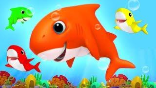 Baby Shark Song | Nursery Rhymes & Kids Songs For Children | Baby Rhyme