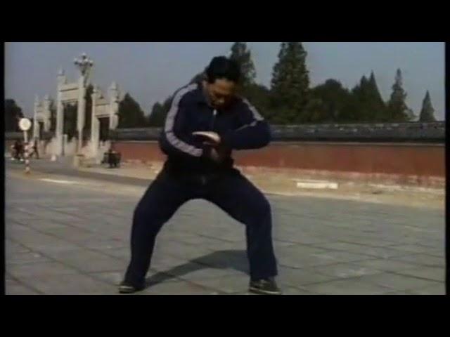 Feng Zi Qiang - Tai Chi style Chen Xinjia Yilu [ 陈氏太极拳新架 Taijiquan style Chen]