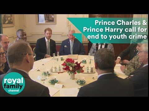 'Enough is enough': Prince Charles and Prince Harry call for an end to youth crime