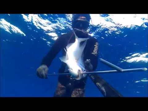 Spearfishing Leros island - ONE BREATH #01